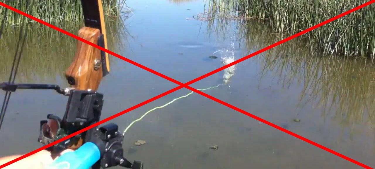 как ловить рыбу ночная рыбалка